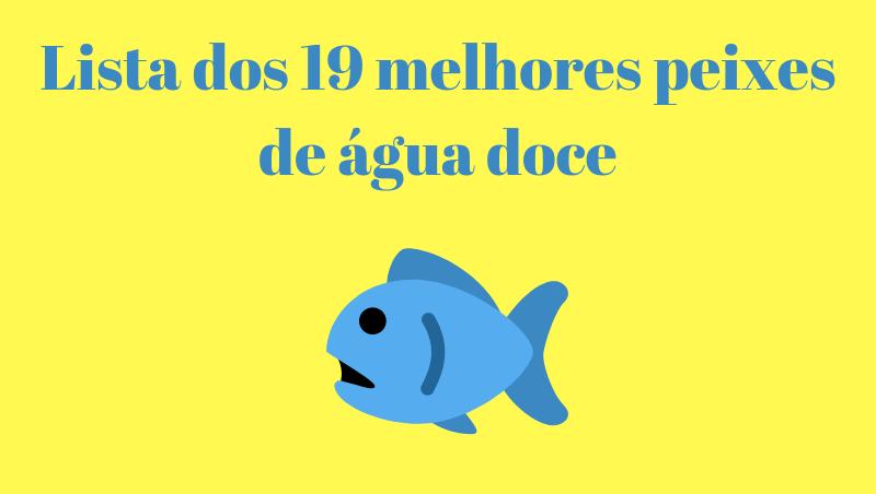 Lista dos 19 melhores peixes de água doce